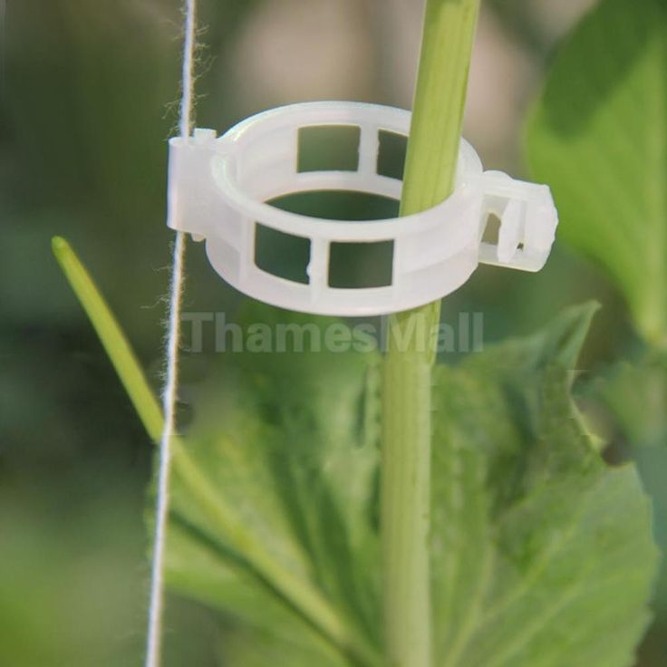 100 Tomato Grafting Clips Supports Plants//Vines Easily Connects to Trellis//Twine