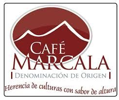 Image result for cooperativa de cafe logo
