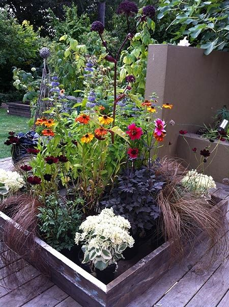 container gardening on deck herbal garden natural soaps. Black Bedroom Furniture Sets. Home Design Ideas