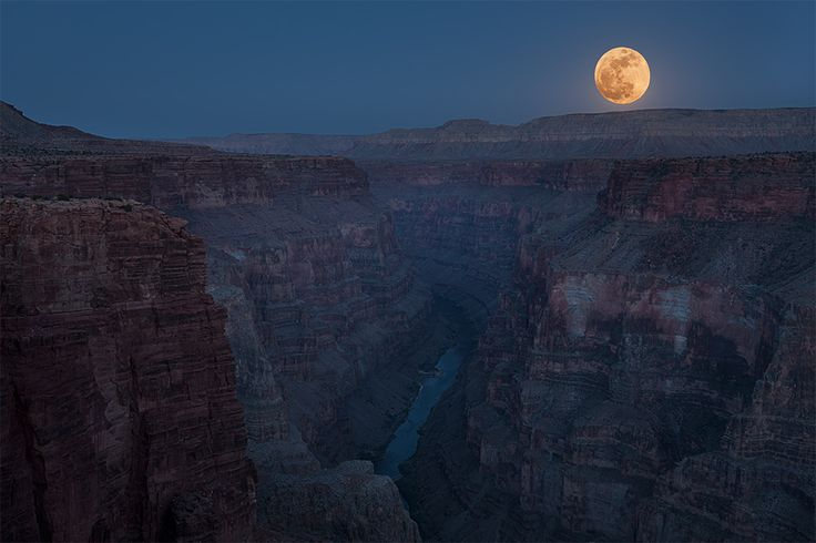 "The rise of the ""Supermoon"" at the Toroweap overlook at the Grand Canyon"