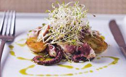 Salada de polvo com batatas e brotos de alfafa ao limão siciliano.