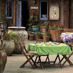 Saltspring Island Cheese Company - makers of artisan goat and sheep milk cheese.  Pack a picnic lunch, and round it out with a selection of cheeses, chutneys and olives from their shop and enjoy it on their lovely patio and garden.