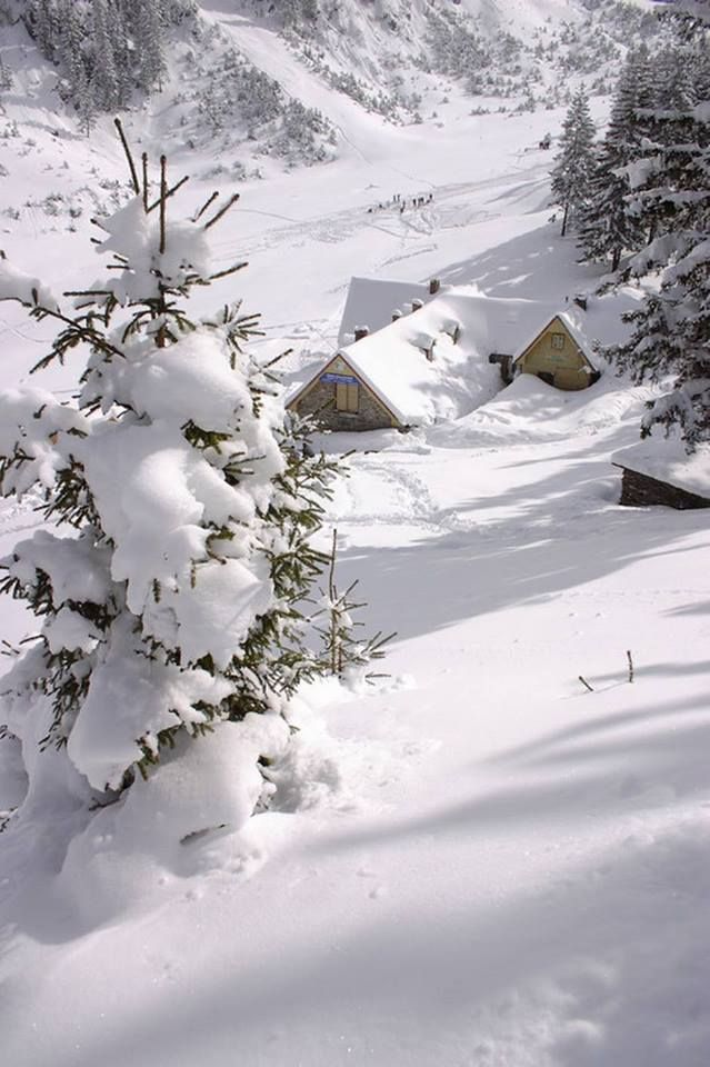 17 best images about winter snow frozen on pinterest. Black Bedroom Furniture Sets. Home Design Ideas