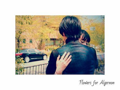 アルジャーノンに花束を②の画像 プリ画像