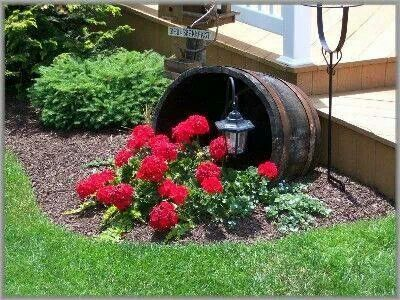 by septic tank wwild flowers - Garden Ideas To Hide Septic Tank