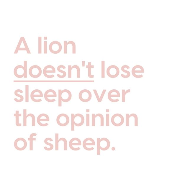 A Lion Doesn T Lose Sleep Over The Opinion Of Sheep Sleep