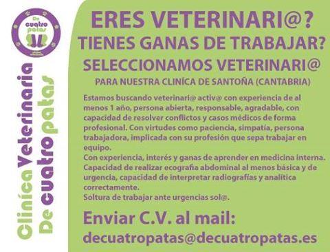 Oferta de #Empleo : #Veterinario/a para Santoña en #Cantabria
