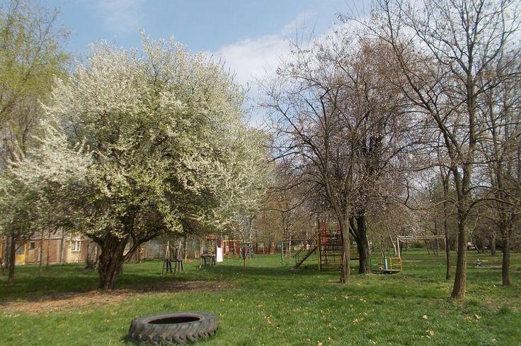 Prolećna idila na igralištu u naselju