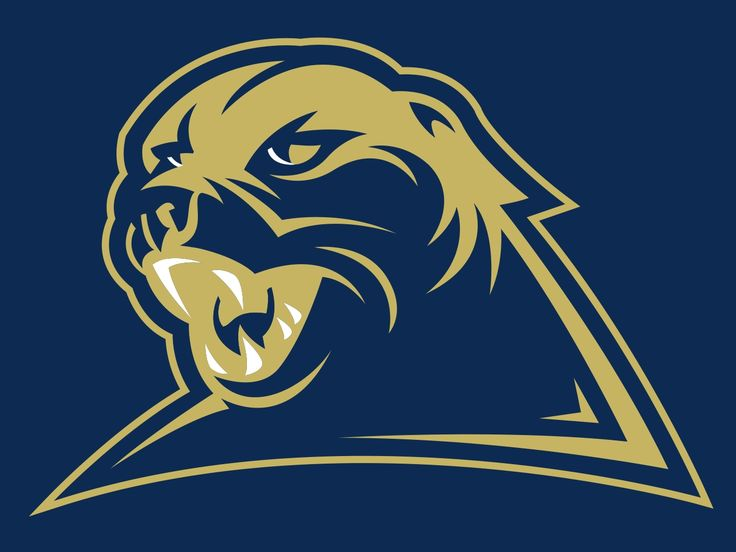 (Pitt) University of Pittsburgh- Panthers
