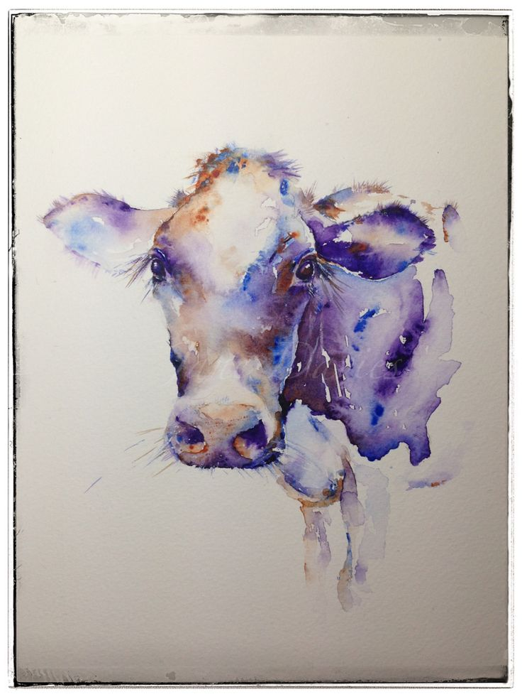 "Purple cow ""Milkyway"" watercolour painting by Jane Davies available as a LIMITED EDITION PRINT"