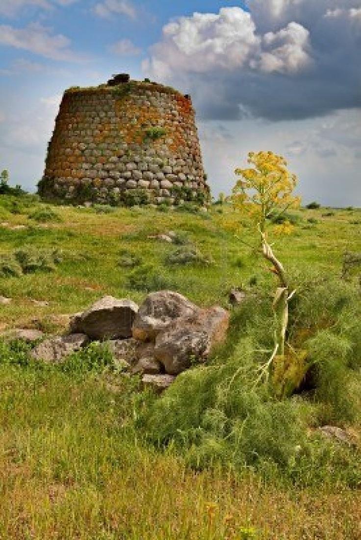 Nuraghe Tower Ruins And Giant Flower Sardinia Sardegna Italy