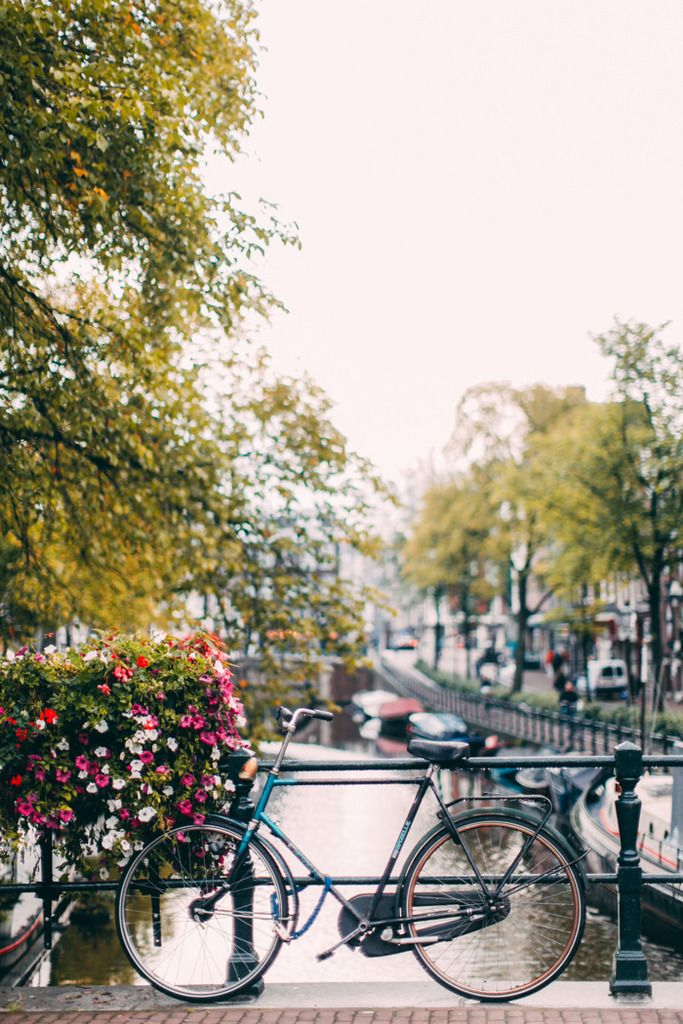 A Clothes Horse: Travel: Postcards from Amsterdam