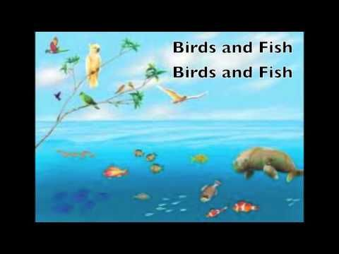 This cute and memorable song will teach about what God made on each day of creation. This video is from the DVD: The Sciencesaurs Explore God's Creation, a v...
