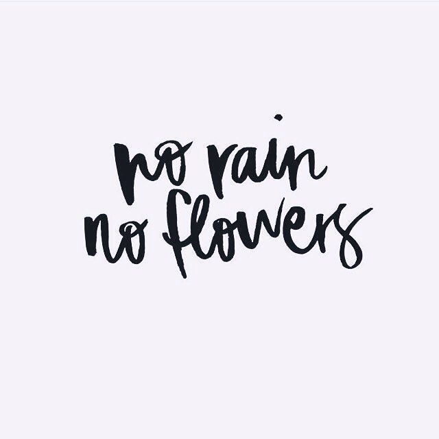 Short Positive Quotes Adorable 21 Best Vsco Bios Images On Pinterest  Proverbs Quotes Quote And