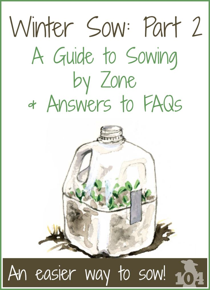 How do I know what to sow and when to sow? What kind of containers can I use? What about watering? I've got the answers to these questions and more.