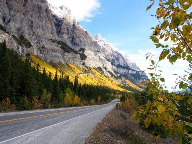 カナディアンロッキー麓に住む私が秋のロッキー山脈をお勧めする3つの理由
