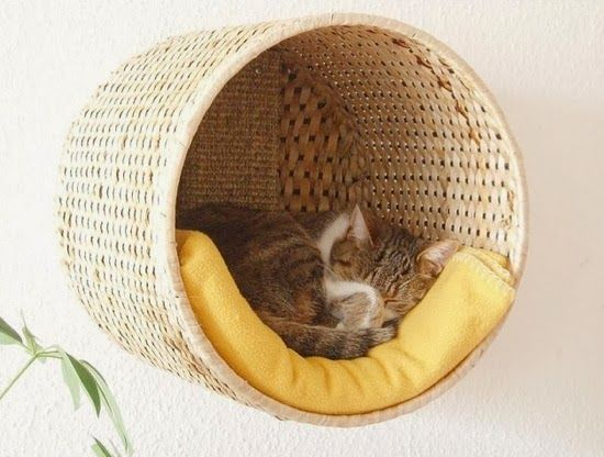 TO DIY OR NOT TO DIY: UMA CAMA SUSPENSA PARA GATOS