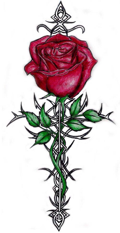 Rose Of Sharon Celtic Cross Tattoo Tattoos Pinterest