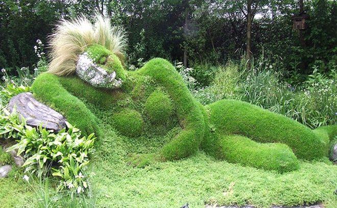 Inspiração Verde.