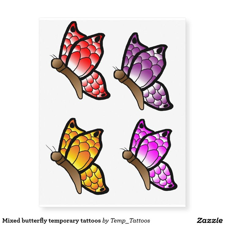 Mixed Butterfly Temporary Tattoos