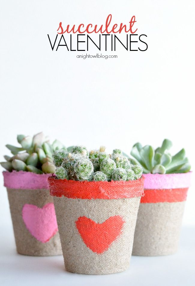Turn plain planters into pretty DIY succulent gifts with some paint and creativity!