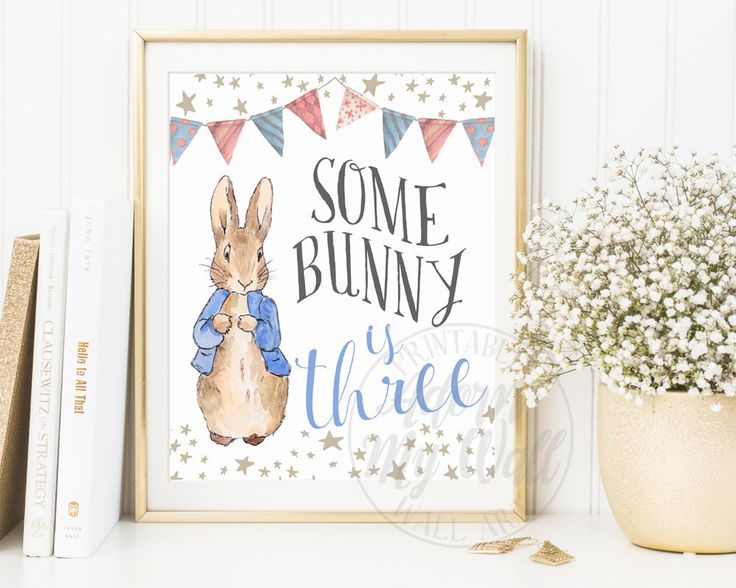 Some Bunny Is Three, 3rd Birthday, Turning Three, Peter Rabbit, Birthday Party Decor, First Birthday Poster, Printable, Decorations, Sign by AdornMyWall on Etsy