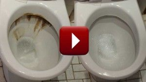 toiletvideo_play