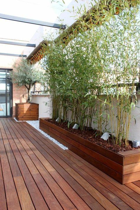 sichtschutz pflanzkübel auf dem balkon und kies