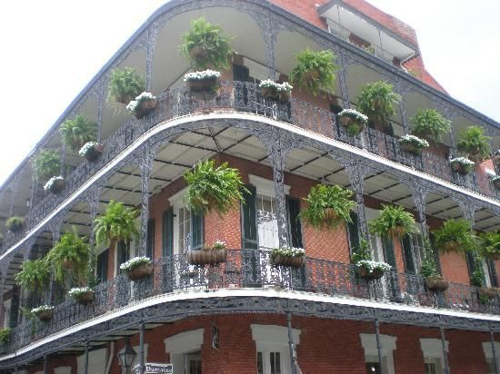 Le Bayou Restaurant, New Orleans - Menu, Prices & Reviews - French Quarter - TripAdvisor