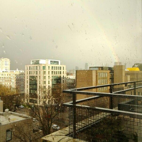 Rainbow, Den Haag