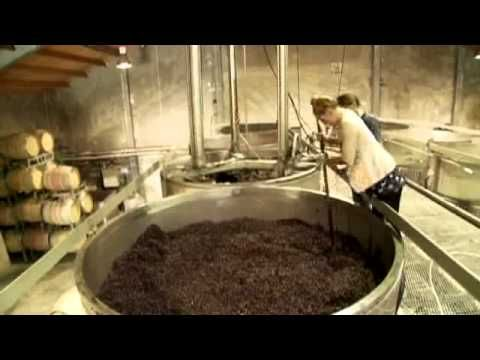 Nautilus Estate Harvest Programme