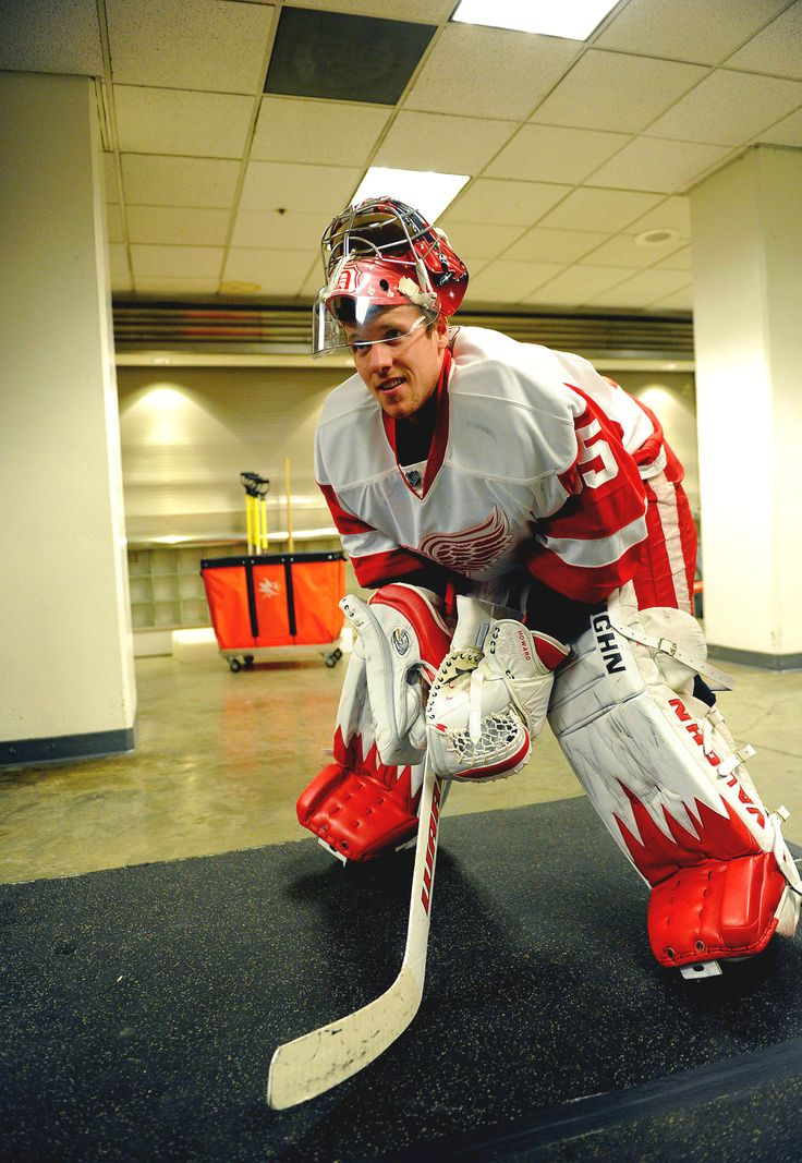 Jimmy Howard, Detroit Red Wings.  Has one of the best glove saves in the NHL fo sho