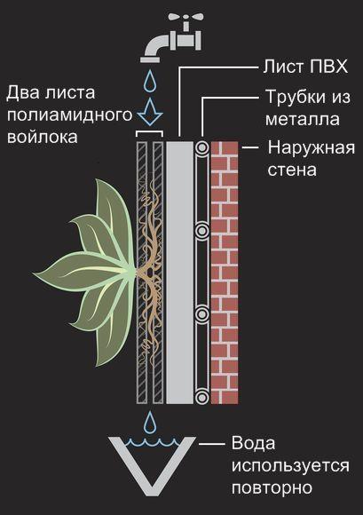 Вертикальное озеленение. Зеленые стены: живые стены и зеленые фасады.: Самые красивые дома