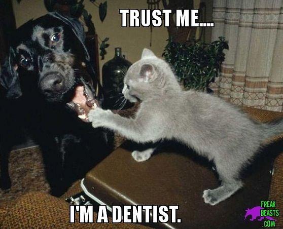 Trust me, I'm a dentist - Children's Dentistry | #Bountiful | #UT | http://www.utahchildrensdentistry.com/