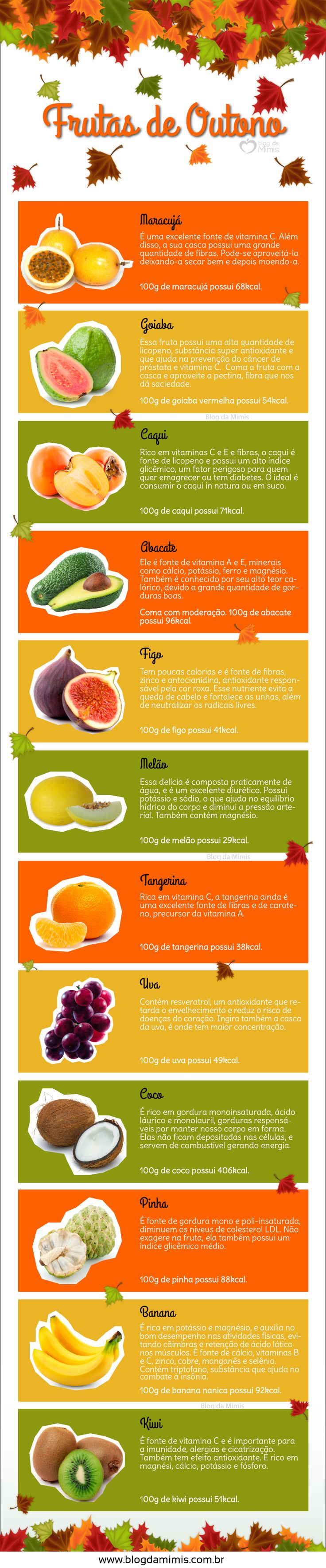Frutas-de-outono-blog-da-mimis-michelle-franzoni-post
