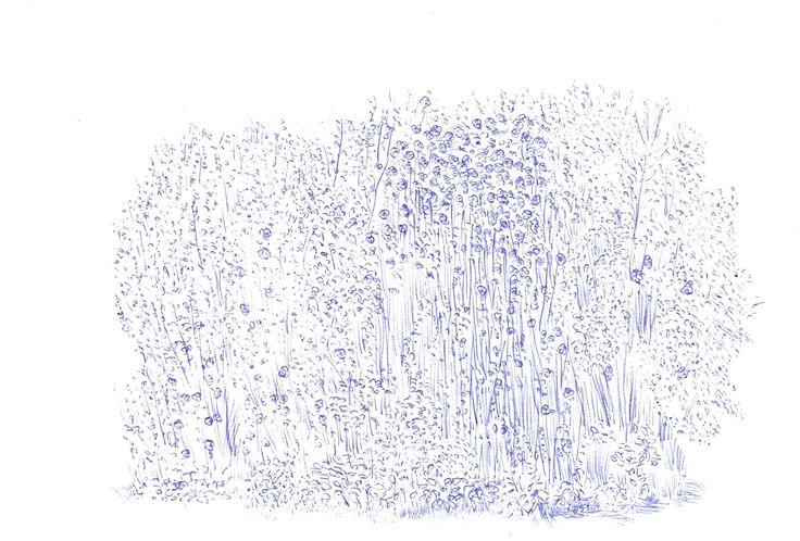 busk pen/sketchbook 2013