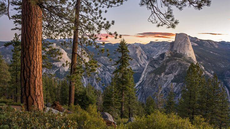 Скачать обои горы, Сьерра-Невада, California, скала Хаф-Доум, деревья, панорама, Sierra Nevada, Национальный парк Йосемити, Yosemite National Park, Йосемити, Калифорния, Glacier Point, Half Dome, раздел пейзажи в разрешении 1920x1080
