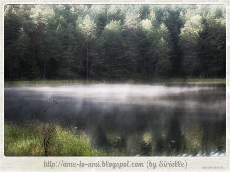 Poland, Suwałki Region. Mist on Berżnik Lake.