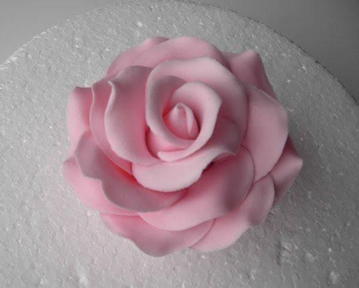 How to make a sugar rose on http://cakejournal.com/tutorials/how-to-make-a-sugar-rose/