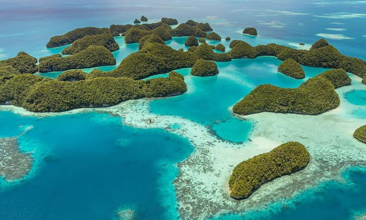 #Palau is a paradise on earth. A helicopter tour a must do. #pacific #visitpalau #housereef #dykking  For the story see site in bio for full post ------------------------------------------- If you are reading about my Palau helicopter tour you either want to go to Palau or you will want to go after reading! Palau is an island nation in the Pacific and a true paradise on earth. Its normally visited during an island-hopping tour together with Yap in Micronesia Guam and the Northern Mariana…