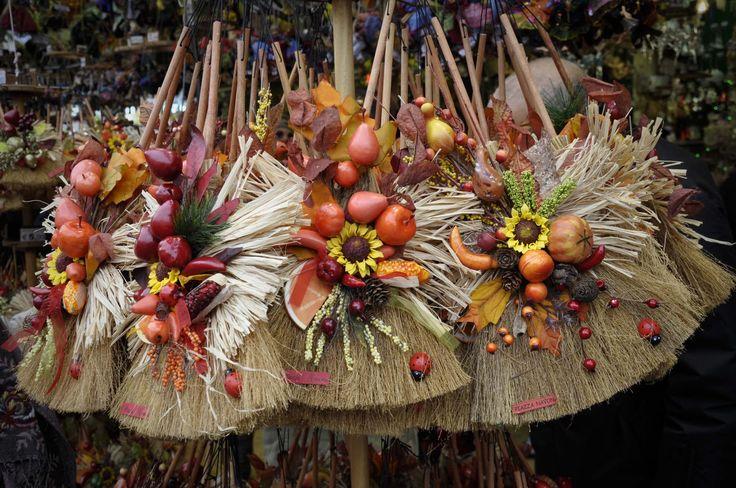 17 migliori idee su fiori primaverili su pinterest for La scopa di saggina