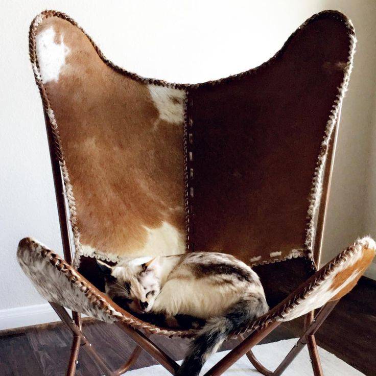 Cow Hide Chair, Texas Home Decor                                                                                                                                                                                 More #ButterflyChair