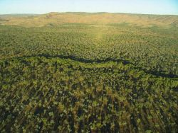 TWA-0016784 © WestPix A Kimberley creek line from the air.