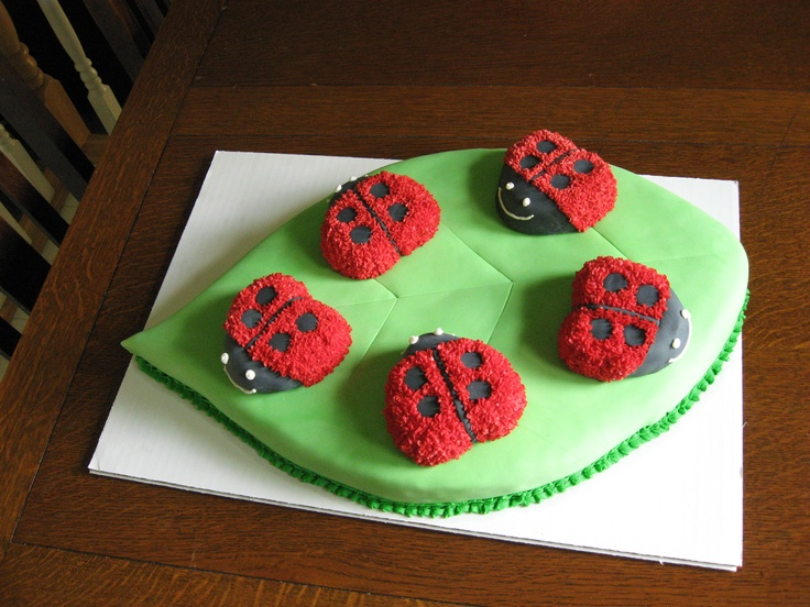 Cake! 5 ladybugs for a 5 year old!