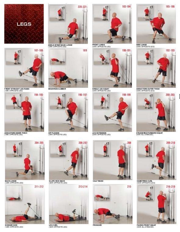 Bodybuilding exercises chart for men tower legs
