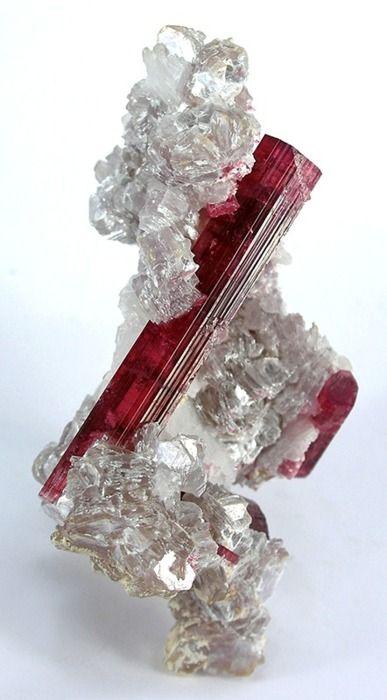 Tourmaline (rubelite) in Lepidolite from Brazil