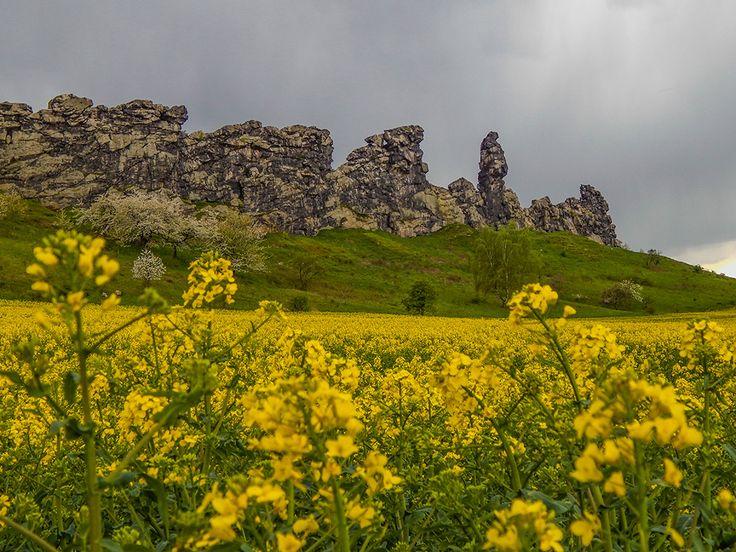 Die Teufelsmauer bei Weddersleben im Harz.  www.treat-of-freedom.de  Abenteuer * Individualreisen * Bushcraft * Outdoor * Natur