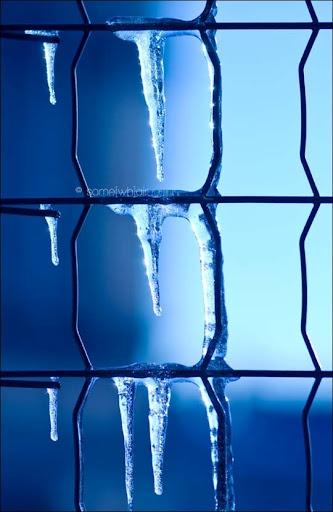 blue: Blue Photographs, Blue Blue, Feeling Blue, Blue, Ice, Blue Colors, Blues, Color Photography