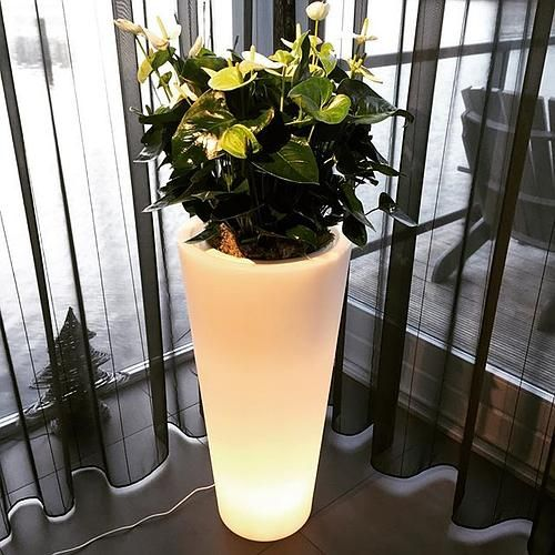 picture of the Pure straight led light winner! thanks for sharing Corine  #decoration #plants #lights #pure #home #indoor #green