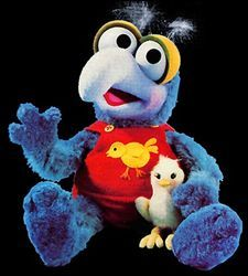 7. Favorite Muppet ~ Baby Gonzo